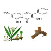 Buy cheap Galangin 98% HPLC, yellow powder, CAS No.: 548-83-4, Galangal Extract, factory, from wholesalers
