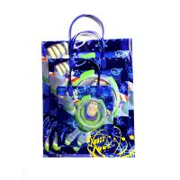 China Personal wavepointed printing pp garment bag recycled plastic gift bag wholesale