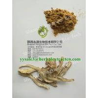 China Dong Quai Extract, Angelica Extract, Ligustilide 1%, CAS No.: 4431-01-0, TCM Extract, High quality, Shaanxi Yongyuan Bio wholesale