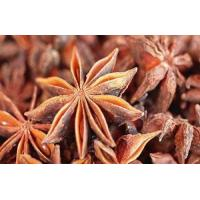 China Fructus anisi stellati Extract, Star Anise Extract, 10:1, Traditional Chinese herb Extract, 100% natural high quality wholesale