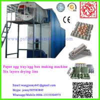 China paper pulp molding egg tray machinery wholesale