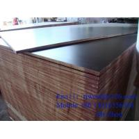 China Two Times Hot Press Shuttering Plywood Brown Film hardwood wholesale