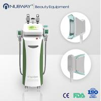 China 5 in 1 deep fat freeze machine fat reducing slimming products for beauty clinics wholesale
