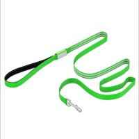 China Durable Nylon LED Dog Leash 6 Foot Long Easily Rechargeable With Padded Handle Dog Lead wholesale