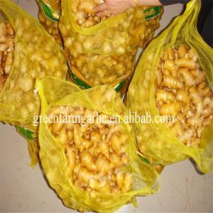 China Jining greenfarm fresh yellow ginger wholesale