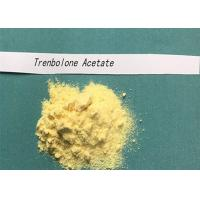 Buy cheap CAS NO 10161-34-9 Tren Anabolic Steroid Trenbolone Acetate Powder Hormone For from wholesalers