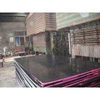 China High Strength Construction Black Film Faced Plywood , Finger-Jointed FFP wholesale