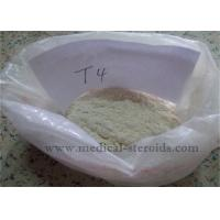 China Weight Loss Steroids T4 L-Thyroxine Sodium Salt For Muscle Growth wholesale