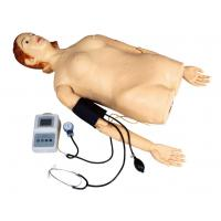 China Female Half - Body Palpation Simulator with Blood Pressure Measurement for School , Hospital wholesale