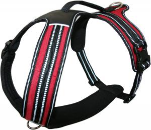 China Two Leash Attachment Rings soft No Pull Nylon Dog Harness wholesale