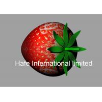 China Red Color 5M Height Inflatable Strawberry With 10M Rope For Fruit Festival UK wholesale