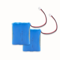 China 11.1V 2000mAh 18650 Battery Pack For Electronic Digital Product wholesale