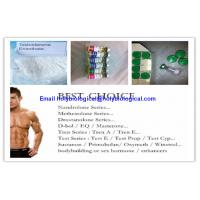 China ​Healthy Intramuscular Hormone Steroid Test Enanthate Testosterone Enanthate wholesale