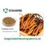 China Mushroom extract Cordyceps extract Polysaccharides Male Enhancement Powder wholesale