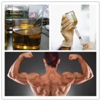 China Injectable Anabolic Steroids Testosterone Enanthate 250mg/Ml CAS 315-37-7 wholesale