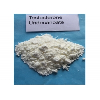 China Muscle Gaining Injectable Testosterone Undecanoate Powder Form CAS 5949-44-0 White Powedr wholesale