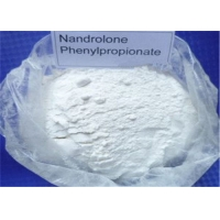 China CAS 62-90-8 Nandrolone Phenylpropionate Powder For Weight Loss Medical Grade wholesale
