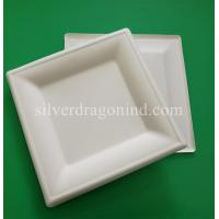 China Biodegradable Disposable Sugarcane Pulp Paper Plate, 8 Inch Square Plate wholesale