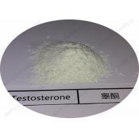 China High Purity Testosterone Steroids Powder Testosterone Base for Building Muscle wholesale