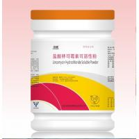 Veterinary medicine Lincomycin Hydrochloride Soluble Powder for poultry use with GMP certificate