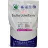 China Animal Feed Probiotics Powdered Bacillus Licheniformis 100billion CFU/G SEM-BL100BI wholesale