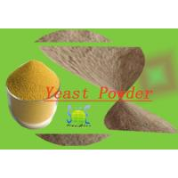 China Animal Feed Additive Nutritional Yeast Powder With 40% Crude Protein SYE-PO40 wholesale