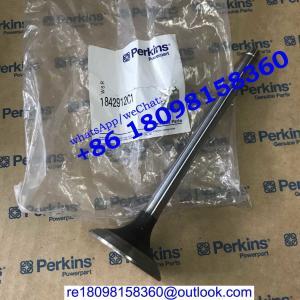 China 1842912C1 1824838c1 VALVE EXHAUST/VALVE INLET FG Wilson engine parts/Perkins engine parts wholesale