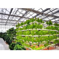 China 4m Bay Width Hydroponic Greenhouse Strong Ability To Resist Bad Weathers wholesale