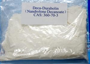 China Safe Deca Durabolin Steroids Nandrolone Decanoate CAS 360-70-3 Powder wholesale