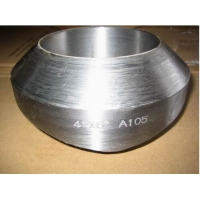 China ASME B16.5 Stainless Steel Wholesale 316L Pipe Fitting Weldolet Forged Steel Fittings wholesale