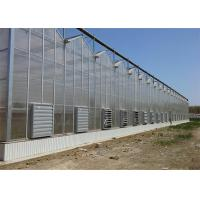 China Shouguan Agricultural Glass Greenhouse Hot Dip Galvanized Rust Prevention Design wholesale