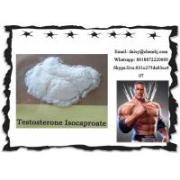 China Bodybuilding Steroids Test Powder Testosterone Isocaproate for Men CAS 15262-86-9 wholesale