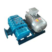 China DSR300G Roots Blower wholesale
