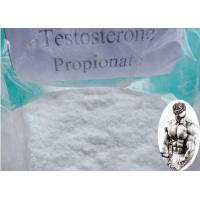 China Muscle Building Pre - Mix Testosterone Propionate Injection CAS:57-85-2 100mg/ml 200mg/ml wholesale