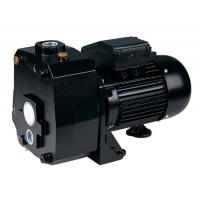 China DP Series Suction Up To 50M Deep Well Pumps For Underground Pumping 1.5HP wholesale