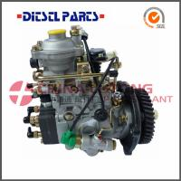 China Fuel Pumps NJ-VE4/11F1900L064 from China Diesel factory wholesale