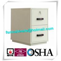 China Waterproof Fire Resistant File Cabinets , Fire Safe File Cabinet With 2 Drawer wholesale