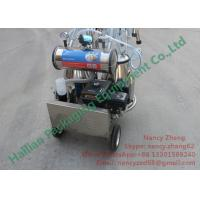 China CE Certificate Portable Milking Machine for Cow Dairy Farm Milking wholesale