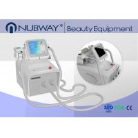 China New Double handles work at the same time cryolipolysis fat freeze body slimming machine wholesale