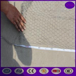 China Galvanized before weaving Garden Chicken wire fence rust prevention wholesale