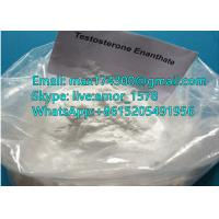 China Anabolic Steroid Raw Hormone Testosterone Enanthate Powder for muscle growth CAS 315-37-7 wholesale