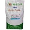 China Nutritional Feed Additives Probiotic Bacillus Subtilis Powder SEM-BS100BI wholesale