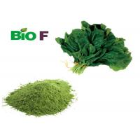 China Green Vegetable Extract Powder  Sodium Copper Chlorophyllin From Spinach wholesale