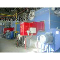 China Gas Fired Horizontal Heating Thermal Oil Boiler , Low Pressure on sale