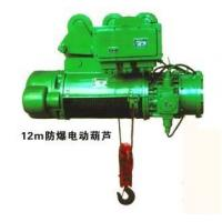 China YT china hot sale explosion-proof electric block/ wire rope electric hoist wholesale