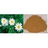 China 100% natural Feverfew P.E 0.3%, 0.8% parthenolide powder wholesale