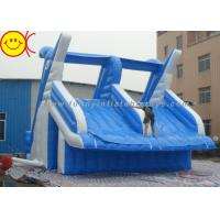 China Giant Dolphin Style Inflatable Water Slide Double Stitching Workmanship wholesale