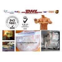 Quality Raw steroid powders Testosterone Propionate 57-85-2 For Muscle Building for sale