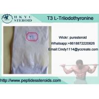 China Healthy Effective Raw Hormone White Powder L-Triiodothyronine T3 For Weight Loss wholesale