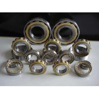 China Steel Gcr15 Skf Cylindrical Roller Bearing With Hot Pressed Customized wholesale